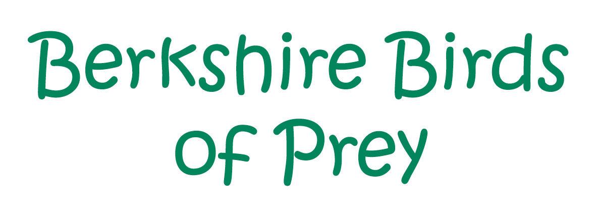 Berkshire Birds of Prey
